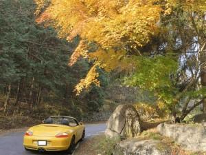 安曇野の秋1